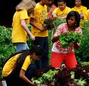 obama garden